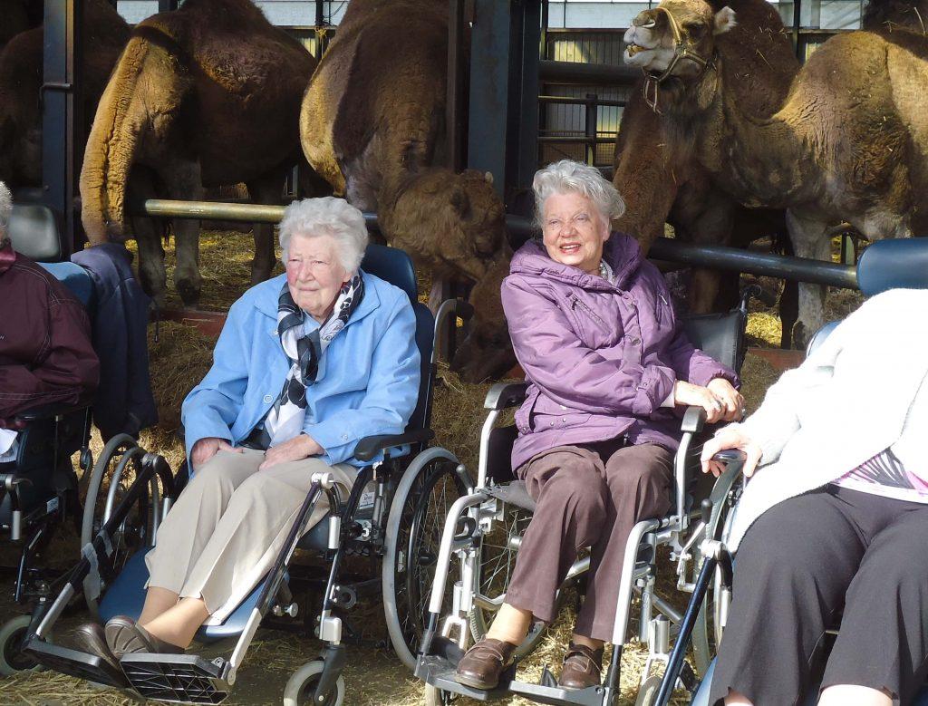 rolstoeltoegankelijke melkerij