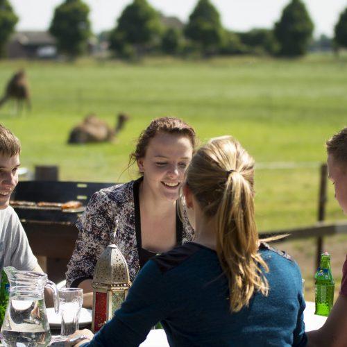 Barbecue met vrienden bij kamelen